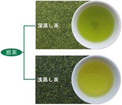 Cha茶Family | 柳生産の茶葉100...